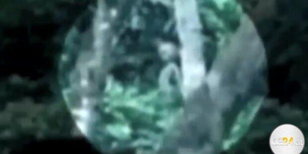 Alien im Dschungel gefilmt