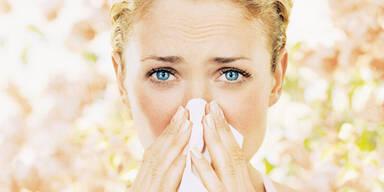Impfung für Bäume soll Allergikern helfen