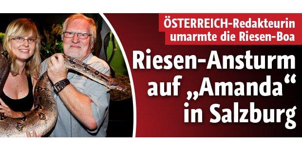Boa Amanda nun in Salzburg zu Hause