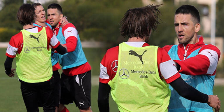 Harnik schlägt sich mit Vedad Ibisevic