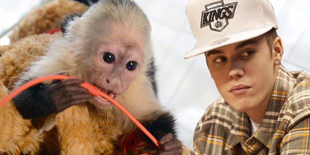 Justin Bieber lässt sein Haustier im Stich