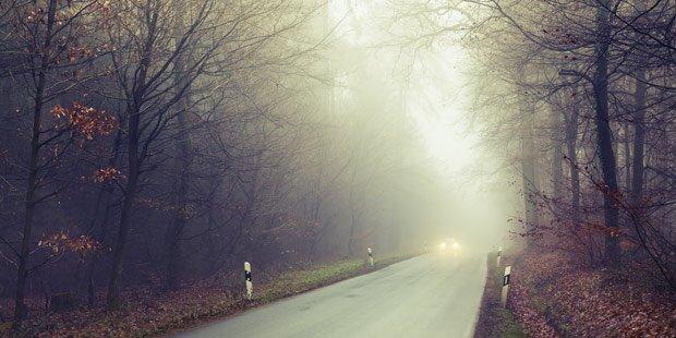 Tristes Nebelwetter vermiest ganze Woche