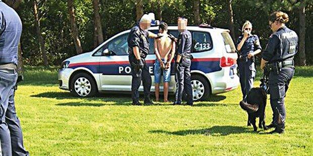 Sex-Täter im Donaupark: Weitere Opfer?