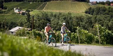 Radfahren in der Südsteiermark