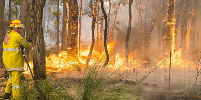 Mehr als 250 Buschbrände in Australien