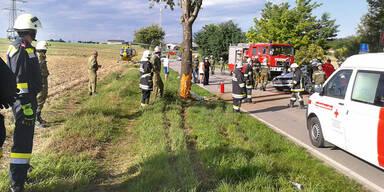 46-Jähriger krachte in einen Baum