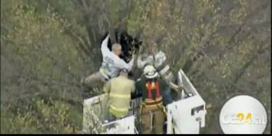 Bär auf Baum von Feuerwehr gerettet
