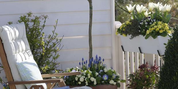 Der Balkon wird zum Garten