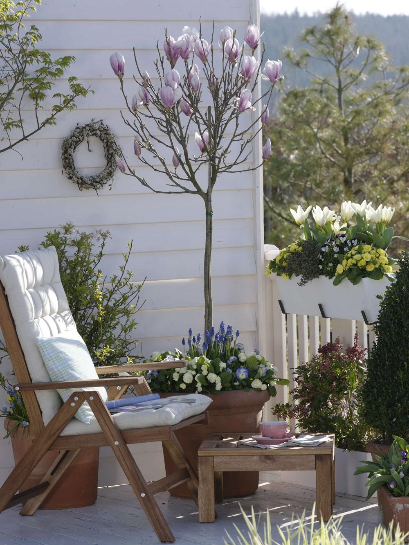 Balkongarten - Garten-CH - Storybild - vollständiger Bildausschnitt