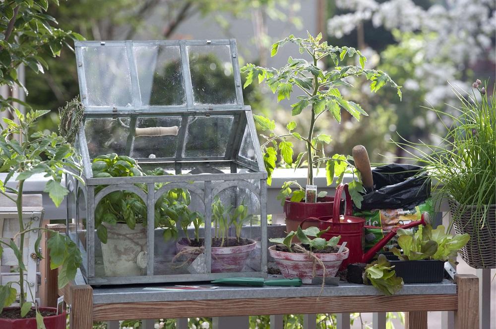 Balkongarten - Garten-CH - Bild 3
