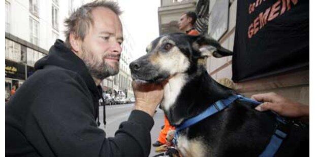 Tierschützer kommen vor Gericht