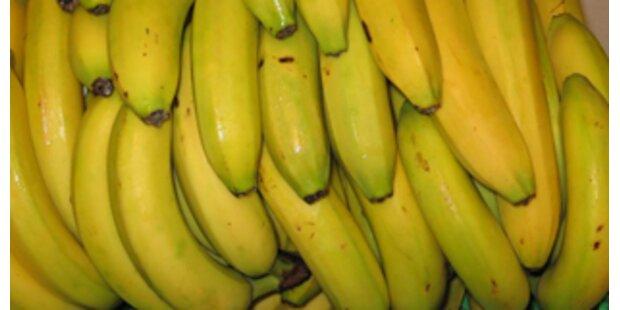 Verdächtige Banane löste Terroralarm aus