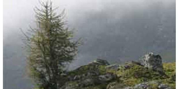 Tiroler Pensionist stürzte in den Tod