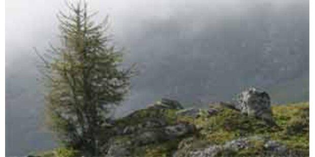 78-Jähriger in Osttirol tödlich abgestürzt