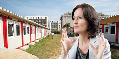 Eva Glawischnig, Containerschule Bernoulligymnasium