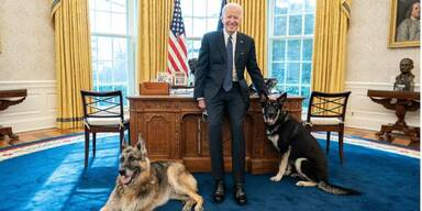 Joe Biden und seine Hunde