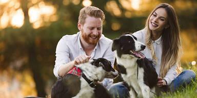 Menschen und Hunde