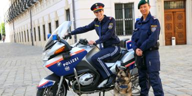 Die Polizei Wien sucht Verstärkung