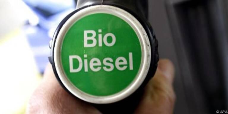 Biodiesel hängt in den Seilen
