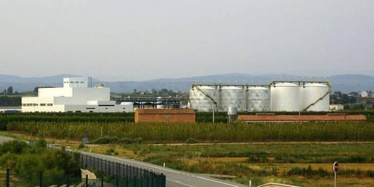 BDI - BioDiesel plant Dividende und Kapitalrückzahlung
