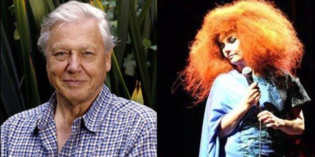 Björk dreht mit Tierfilmer Attenborough