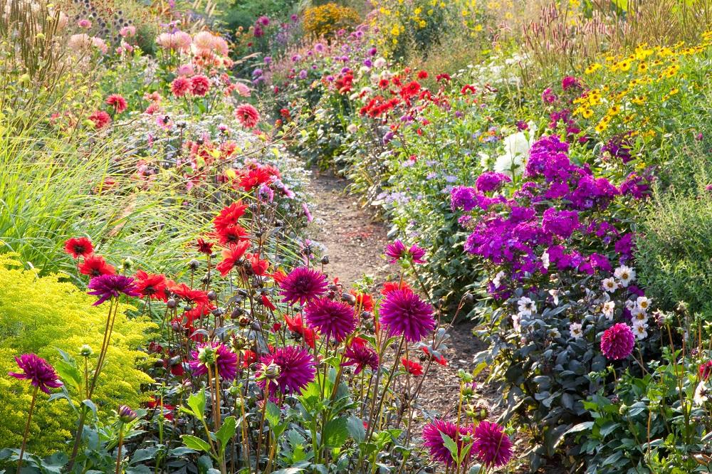 Blühende Beete - Garten-CH -  NaturLust 13 - Seite 24