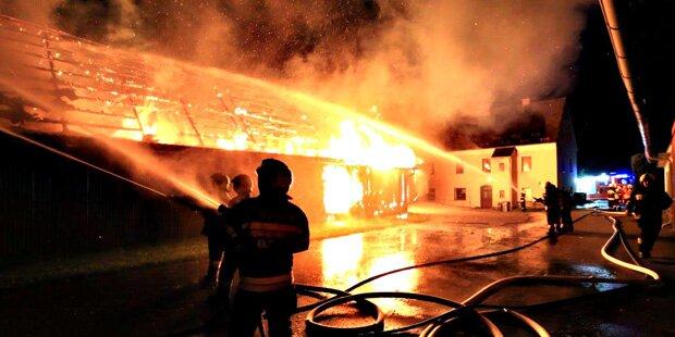 Feuer verschlingt steirisches Wirtschaftsgebäude