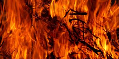 Feuer, Brand - Tierschutz-CH - Brasilien - Konsole