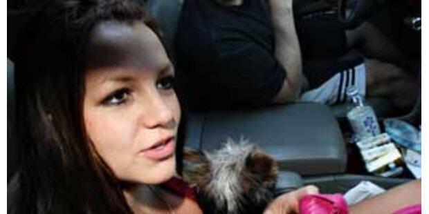 Ihr Vater will Britney zu Klinikaufenthalt zwingen