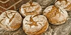 Bayern: Kot im Brot: Ekel-Alarm in Bäckereien