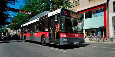 Bus Autobus Stadtbus Wien 13A Wiener Linien