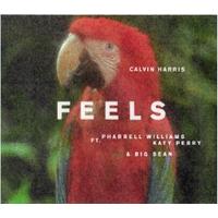 CALVIN HARRIS ft. PHARREL WILLIAMS, KATY PERRY, BIG SEAN