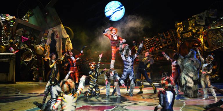 """Kultmusical """"Cats"""" feiert Linz-Premiere"""