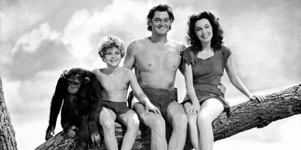 Große Trauer um Tarzan Affe Cheetah