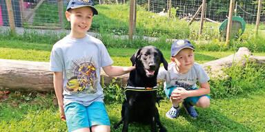 Christoph Diabetes Therapie-Hund