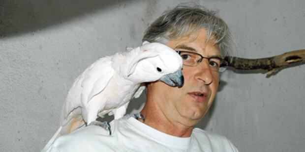 Tierhasser erschießt 3 Papageien