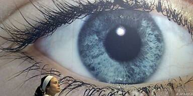 """Das Auge behält Reize """"in Erinnerung"""""""