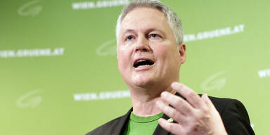 Wiener Grünen-Klubchef david Ellensohn