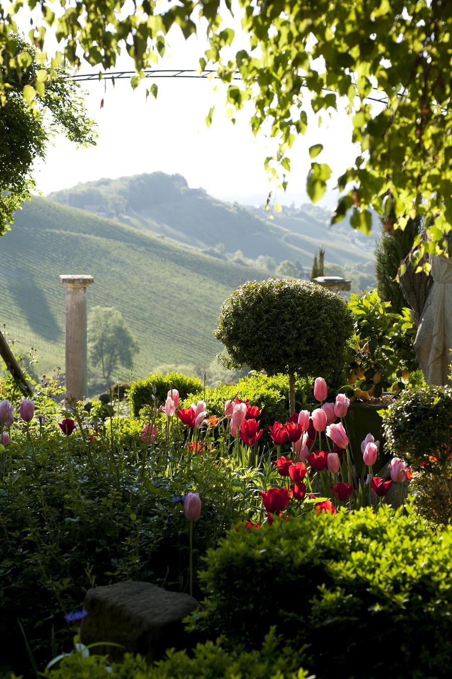 David-Tulpen - GartenCH - NaturLust 16 - NaturGarten Seite 26