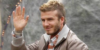 David Beckham bekam Bulldogge zu Weihnachten