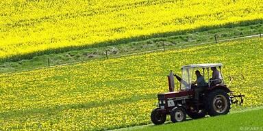 Debatte über Einheitswerte in der Landwirtschaft