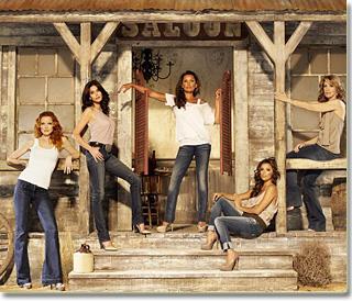 5 Vanessa Williams Desperate Housewives