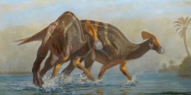 Sensation: Forscher entdecken neue Dinosaurier-Art