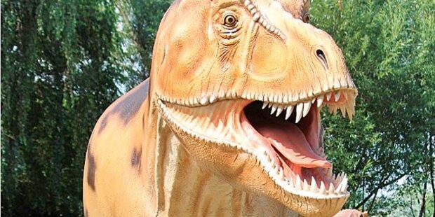 Neue Dino-Welt in Perchtoldsdorf