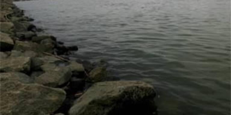 Vier Männer mit Schubschiff auf Donau gekentert