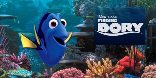 Nach Nemo wird nun Dory im Meer gesucht