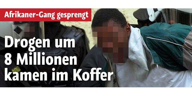 Drogen um 8 Mio. Euro kamen im Koffer