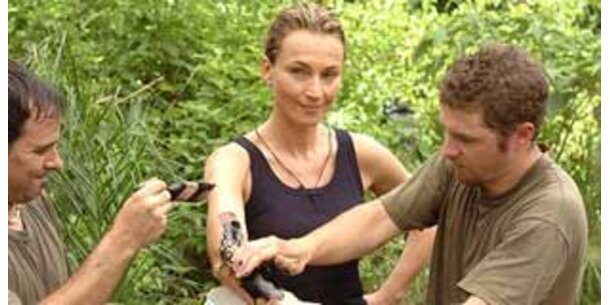 RTL zieht wieder in den Dschungel