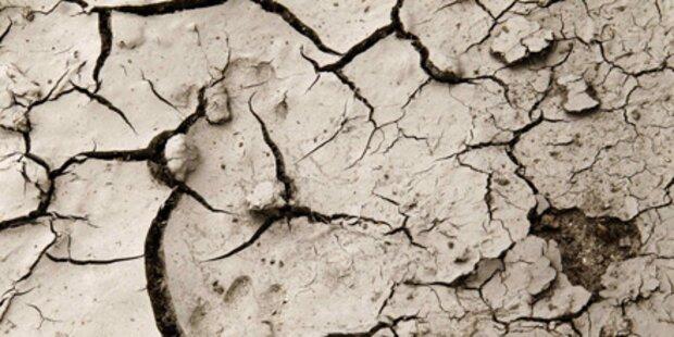 Dürre macht Frankreich zu schaffen