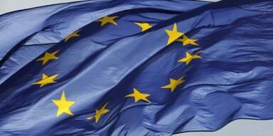 EU-Abgeordnete nahmen Resolution an